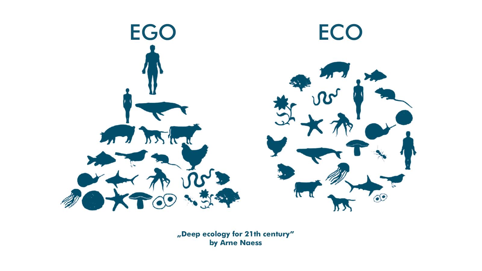 eco ego.jpg